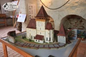 muzeu-satesc-axente1